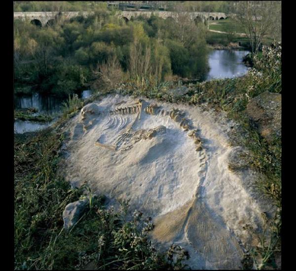 Hydropitecus de Tanaron 2, 2001, de la série Sirènes de Joan Fontcuberta, © Joan Fontcuberta