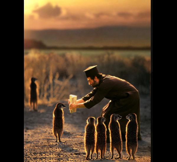 Munkki Juhani fait lire un chapitre du Kalevala à des suricates lapons, Joan Fontcuberta, de la série miracles & co, 2002