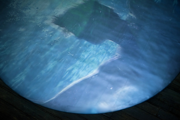 Detail of the 10' diameter 'pool, projection, photo credit Brian Foulkes