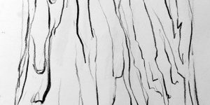 louise_banner_2