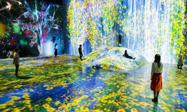 About teamLab